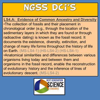 Claim Evidence Reasoning Human Evolution MS-LS4-1 HS-LS4-2 HS-LS4-1 MS-LS4-2