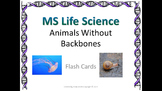 Life Science Animals Without Backbones Flash Cards
