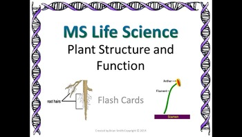 Life Science Plant Structure and Function Flash Cards