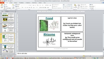 Life Science Types of Plants Flash Cards