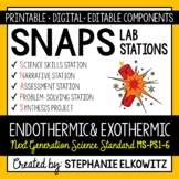 MS-PS1-6 Endothermic and Exothermic Reactions Lab Stations - Printable & Digital