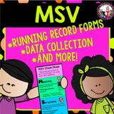 Running Records/MSV cheat sheet