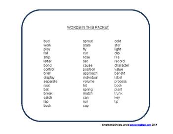 MULTIPLE MEANINGS - Grade 2-3