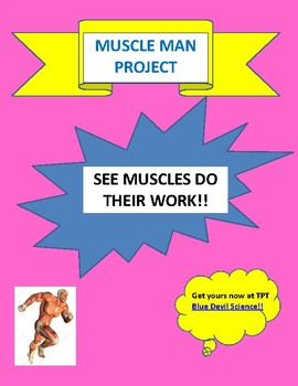 MUSCLE MAN PROJECT:  SEE MUSCLES DO THEIR WORK!
