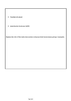 MYP Biology Endocrine system