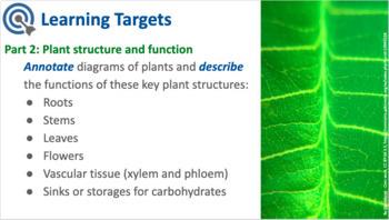 MYP Biology - Plant Adaptations