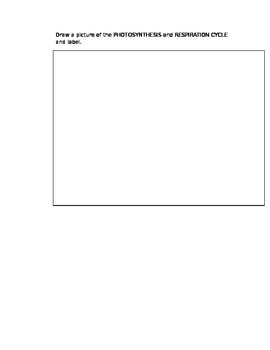 MacMillan McGraw Hill Science Chapter 2 Lesson 3 Reading Outline