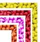 Frames - Macaroni Shells Design - Colors and BW