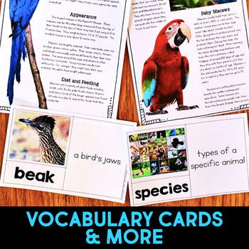 Macaw: Informational Article, QR Code Research & Fact Sort