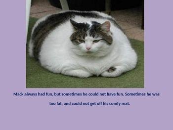 Mack The Fat Cat Short A Story