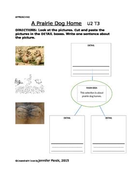 Macmillan Grade 1 Unit 2 Theme 3 - A Prairie Dog Home (Tiered Assignment)