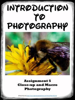 Macro Photography Lesson (Assignment 5)