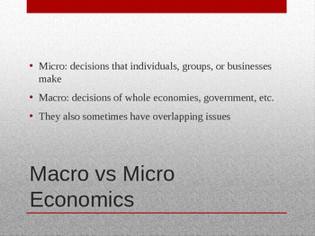 Macro/Micro Economies and the Role of Incentives and Resources