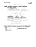 Macroeconomics GDP Business Cycle Unit Test