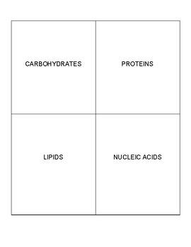 Macromolecule Flip Chart