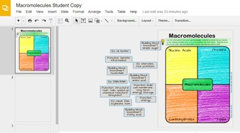 Biochemistry and Macromolecule Digital Organizer and Lesson Activity