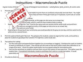 Macromolecule Review Puzzle