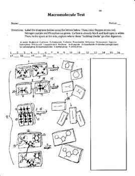 Macromolecule Test/Quiz
