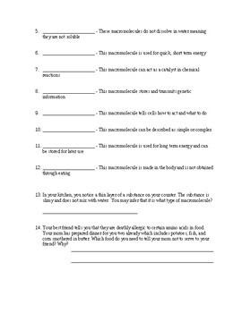 Macromolecule Worksheet / Quiz (includes key)