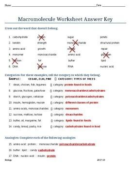 Biochemistry Macromolecules Worksheet w/Answer Key