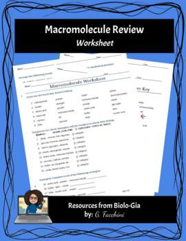Biochemistry Macromolecules Review Worksheet w/Answer Key ...