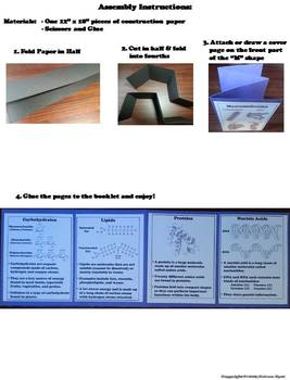 Macromolecules Activity: Organic Compounds Interactive Notebook Foldable