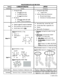 Macromolecules Anchor Chart EOC Review