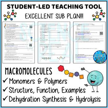 Macromolecules Biomolecules Organic Compounds WebQuest