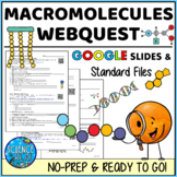 Macromolecules Biomolecules Organic Compounds WebQuest