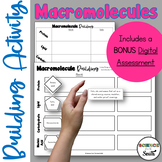 Macromolecules Building Activity for Middle and High School Students