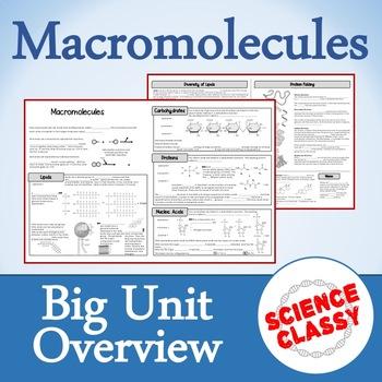 Macromolecules Bundle!