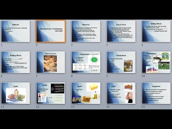 Macromolecules: Carbohydrates and Lipids PowerPoint Lecture Presentation
