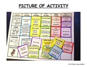 Macromolecules Card Sort Activity