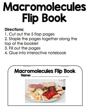 Macromolecules Flip Book