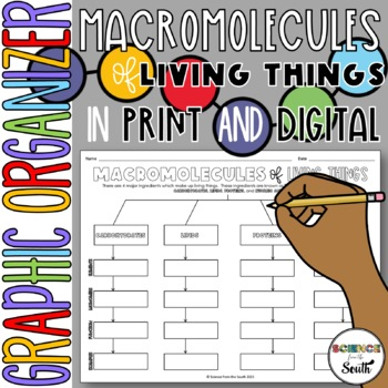 Macromolecules Graphic Organizer for Interactive Notebooks and More