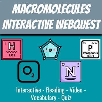 Macromolecules Interactive Slide Deck for Google Classroom