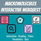Macromolecules Interactive Slide Quest