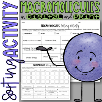 Macromolecules (Organic Molecules) Card Sort for Review or Assessment
