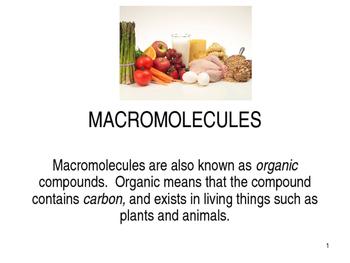 Macromolecules PPT
