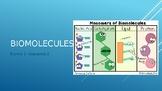 Macromolecules PowerPoint
