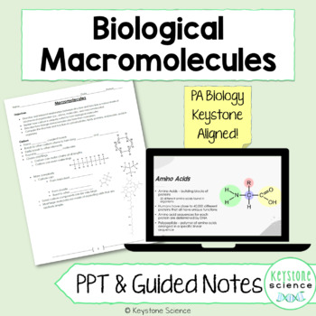Organic Macromolecules PowerPoint Guided Notes with KEY Biology Keystone Aligned