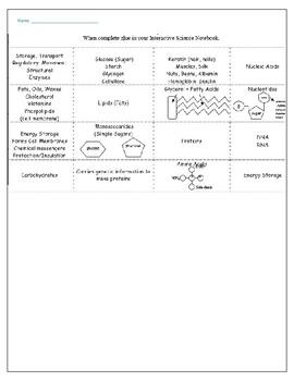 Macromolecules Practice