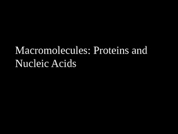 Macromolecules: Proteins and Nucleic Acids PowerPoint Pres