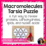 Macromolecules Tarsia Puzzle