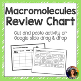 Macromolecules Review Chart for INB