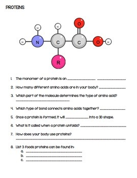 Macromolecules Review Packet