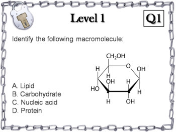Macromolecules Activity: Escape Room - Science