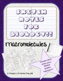 Macromolecules Sketch Doodle Notes