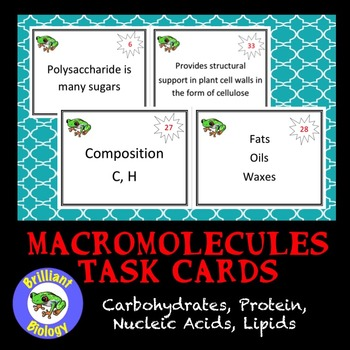 Macromolecules Task Cards: Carbohydrates, Lipids, Nucleic