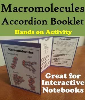 Macromolecules Task Cards and Activities Bundle